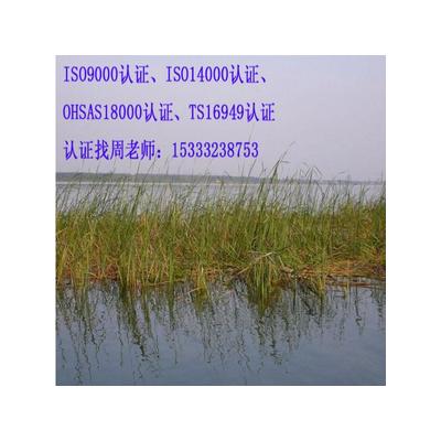 北京ISO900质量管理体系认证