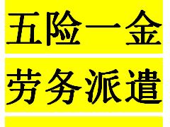 深圳企业怎么选择合适的社保代理公司,骏伯人力来告诉您